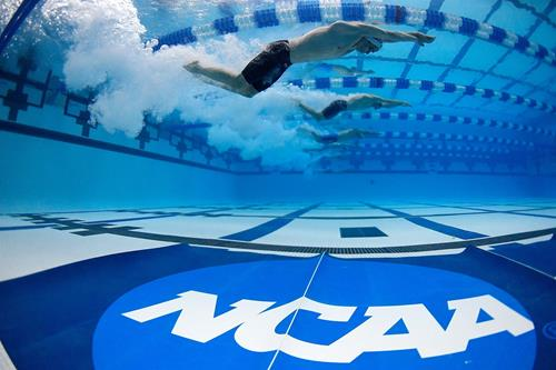NCAA Site Selection and Bid Process